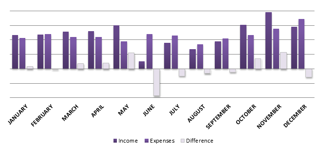 mlig-2013-income-expenses-final