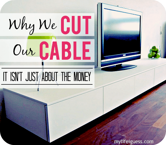 Why We Cut Our Cable (It Isn't Just About the Money) - mylifeiguess.com