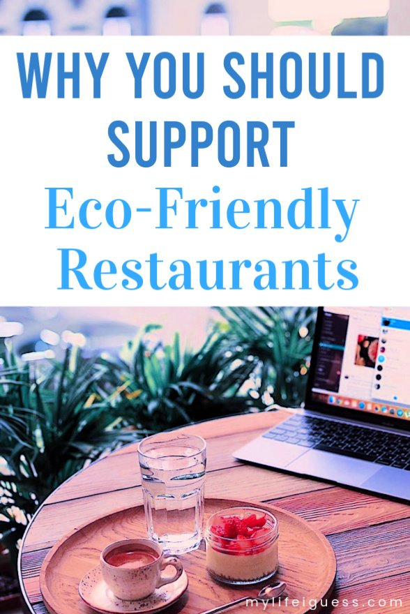 Why You Should Support Eco-Friendly Restaurants  It seems like small changes like choosing to support eco-friendly restaurants doesn\'t matter when there is an environmental crisis going on - but they do.  environment, pollution, save the planet, shop local, eat local, support your local economy, cut down waste, less waste, better food, healthier food, eat better, go green, support green businesses