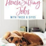 Find the Best House Sitting Jobs With These 6 Sites